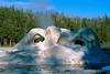 Grotto geyser - Yellowstone NP