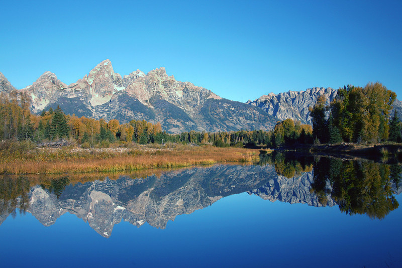 Tetons Reflected In Beaver Pond - Grand Teton National Park - WY