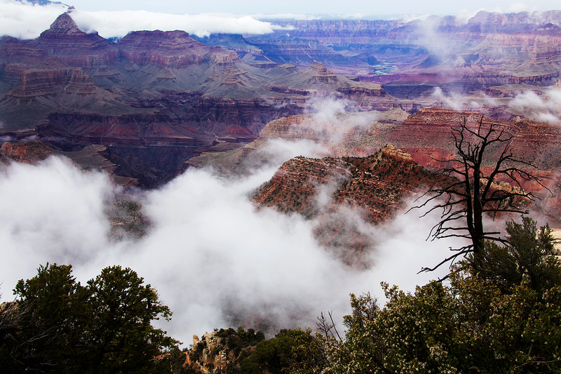 Low Clouds From Southeast Rim - Grand Canyon National Park - AZ