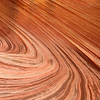 The Wave, Swoop - Vermillion Cliffs National Monument - AZ