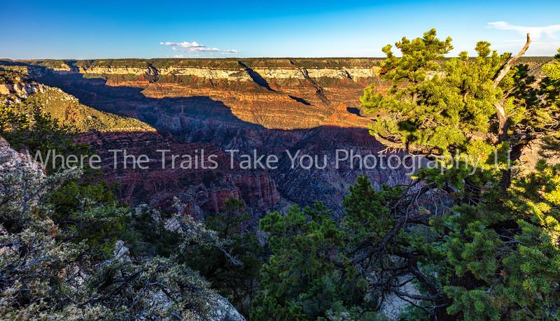 50.  Roaring Springs Canyon