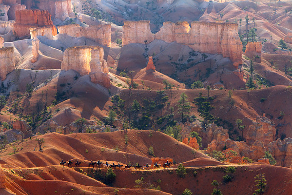 Horse Back Riders in early morning light in Bryce Canyon National Park. This image gives you a sense of scale with the riders and the hoodoos.