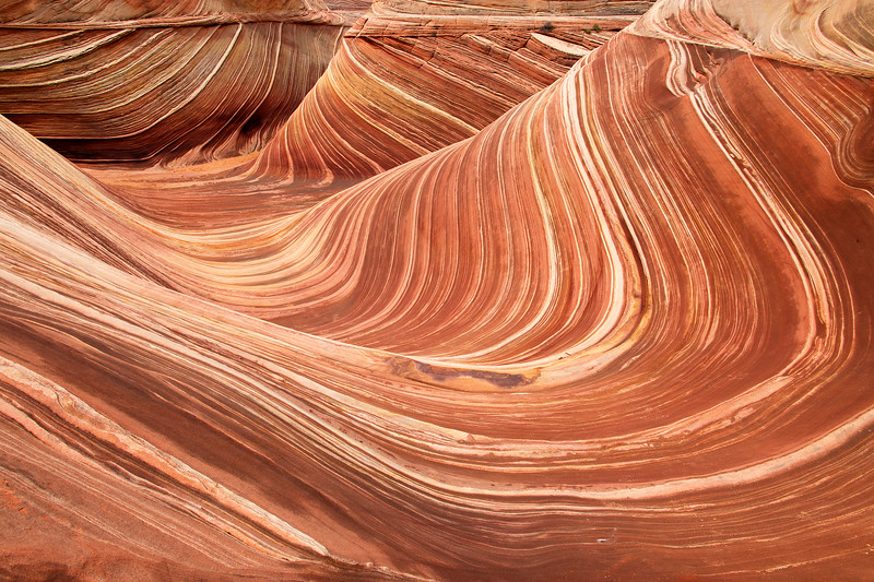 The Wave, Wide Angle - Vermillion Cliffs National Monument - AZ