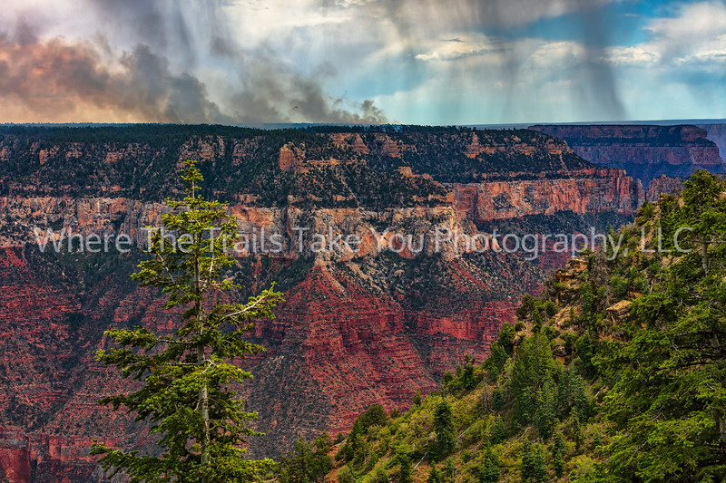 58.  Forest Fires And Thunderstorms On The North Rim