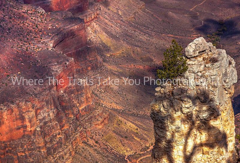 19.  Canyon View