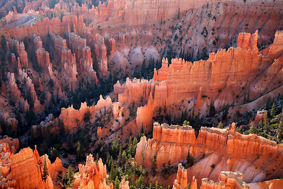 Hoodoos - Bryce Canyon National Park - UT