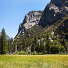 Zumwalt Meadow - Kings Canyon National Park - CA