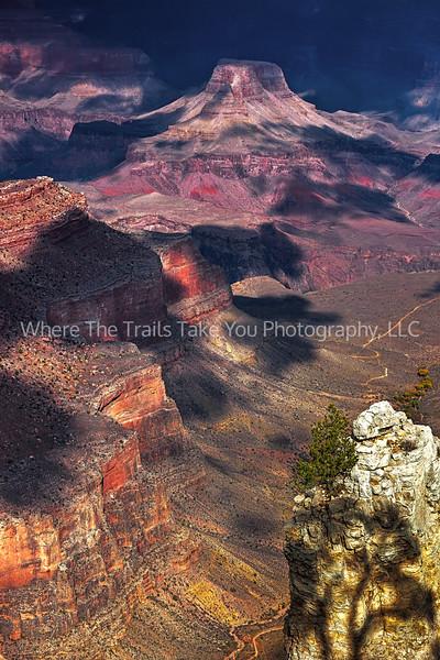 20.  Canyon View