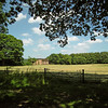 "National Trust; Gibside, ""Rowlands Gill"
