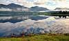 Morgenstemning ved Skjeøbreidvatnet