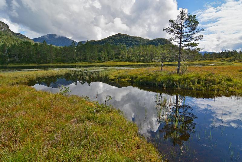 Fra Holdhustjørna mot Gjønakvitingen og Heihillerhornet