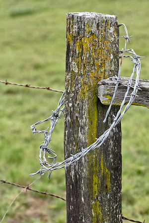 Fence Post With Spare Barbed Wire