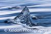 Natural Ice Sculpture, Diamond Beach, Iceland
