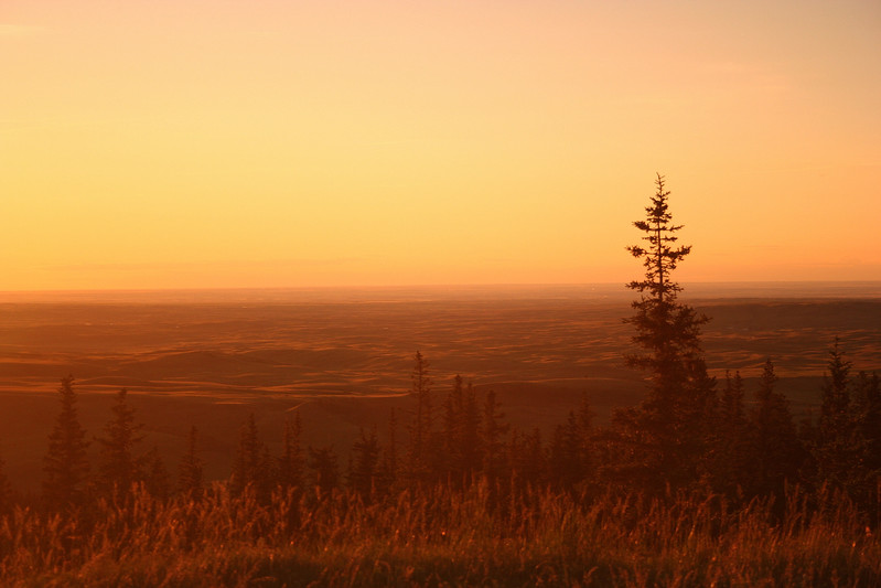 I took this picture near Elkwater, Alberta, Canada when the sun was close to setting.  The only colour enhancement was the use of a warming filter (81b I think).  This is porbably one of my best photos to date (thus far).