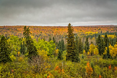 Fall Colors North Eastern Minnesota