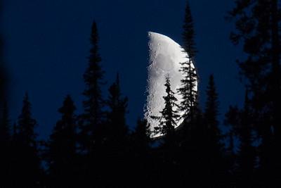 Jasper Moon