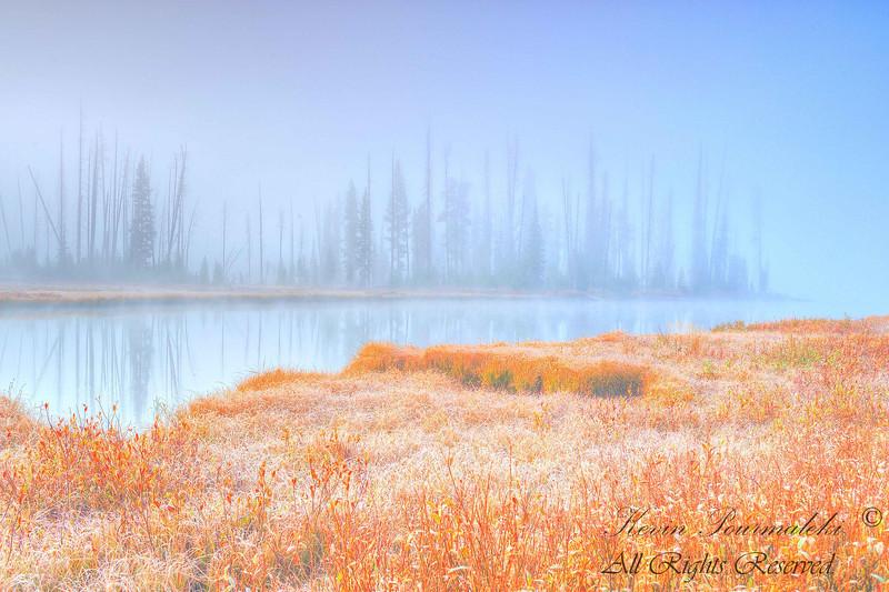 Yellow Stone National Park, Wyoming.