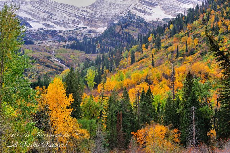 Glacier National Park.  Montana.