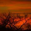 Sunrise in Bosque, New Mexico.