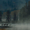 Snake River. Grand Teton National Park.  Wyoming.