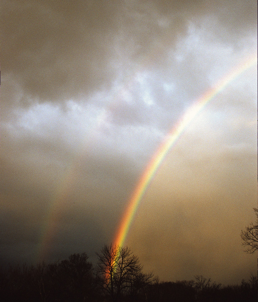 Rainbow in Winter<br /> <br /> An additional frame; I went to vertical as the rainbow receded toward the ground.  I checked the tree at its end, but alas there was no gold.<br /> <br /> <br /> Nikon F4, Sigma 21-35mm @35mm