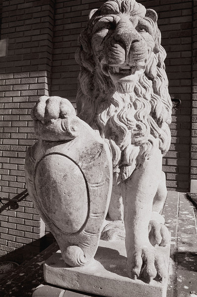 Lion Statue<br /> <br /> Norwood, OH