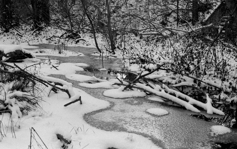 Snow, Water, and Ice<br /> <br /> <br /> The phases of water were present in full glory after what was to be the first of two snowstorms all winter here.  It was extremely cold, at just above ten degrees Fahrenheit, and I was just able to shoot one roll of this lovely little woodland area before packing it in for the day.
