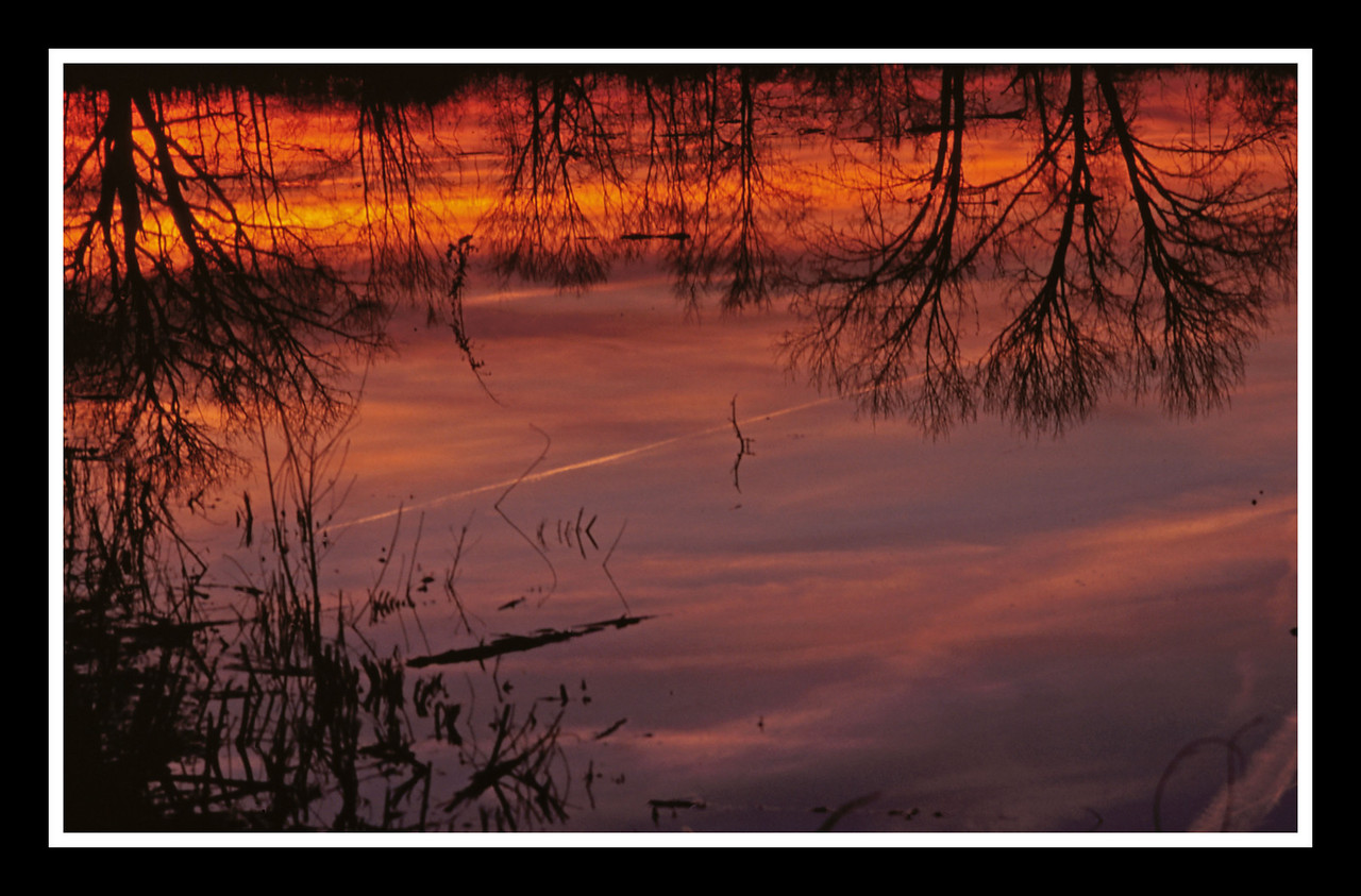 Reflecting on Sunsets<br /> <br /> <br /> Sun setting over the Shaker Trace Wetlands one March evening.  It was much prettier than this shot shows.<br /> <br /> Konica T3, 100mm