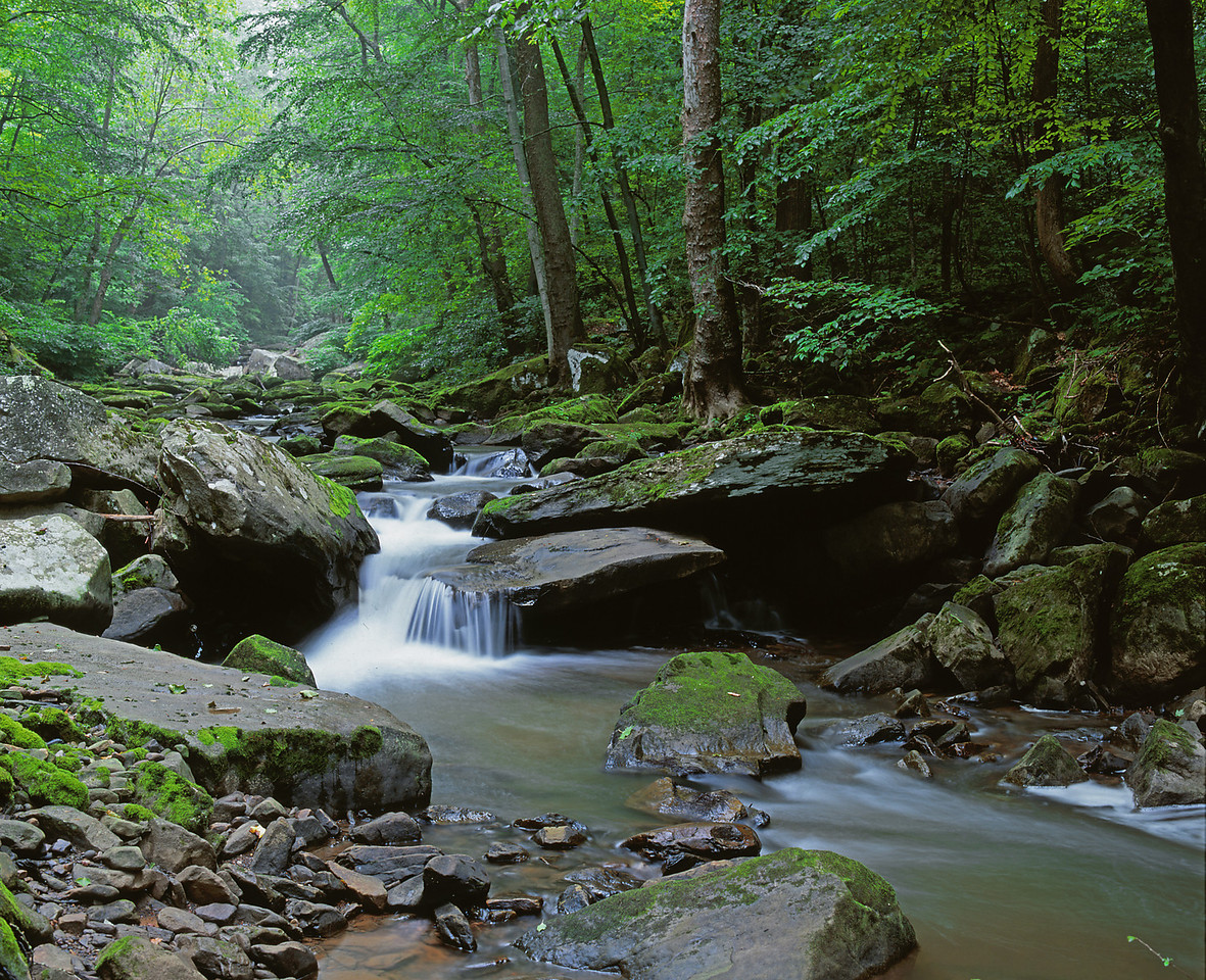 Mill Creek near the Hawk's Nest Lodge in West Virginia