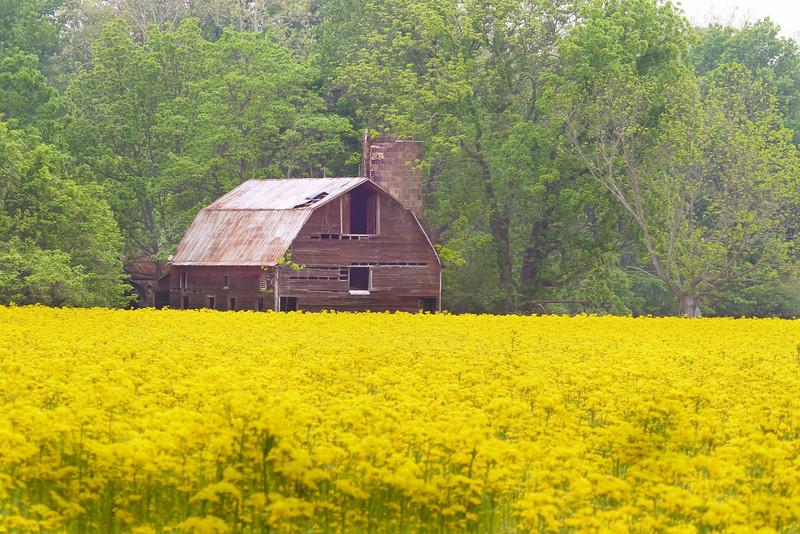 Vigo County, Indiana, May 14, 2011.
