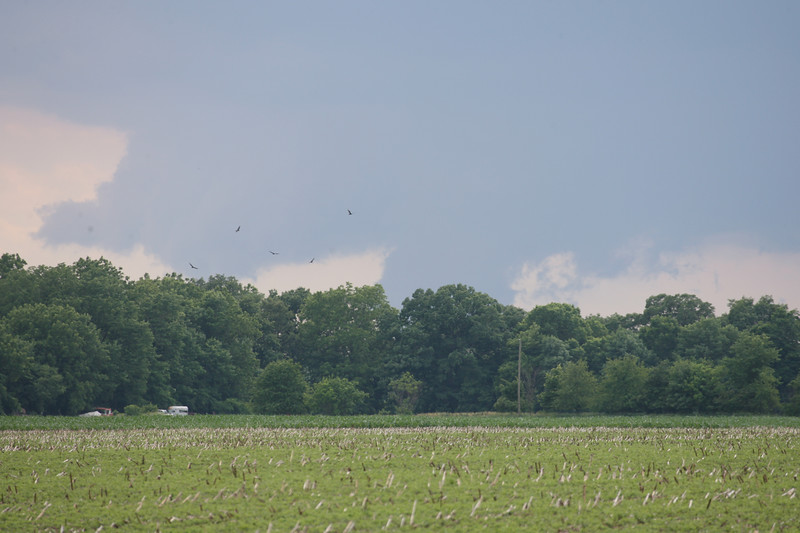 Photo 2 of 2: Interesting cloud formations from a small storm south of Attica, Indiana on June 5, 2007.  Only slight damage from hail reported.