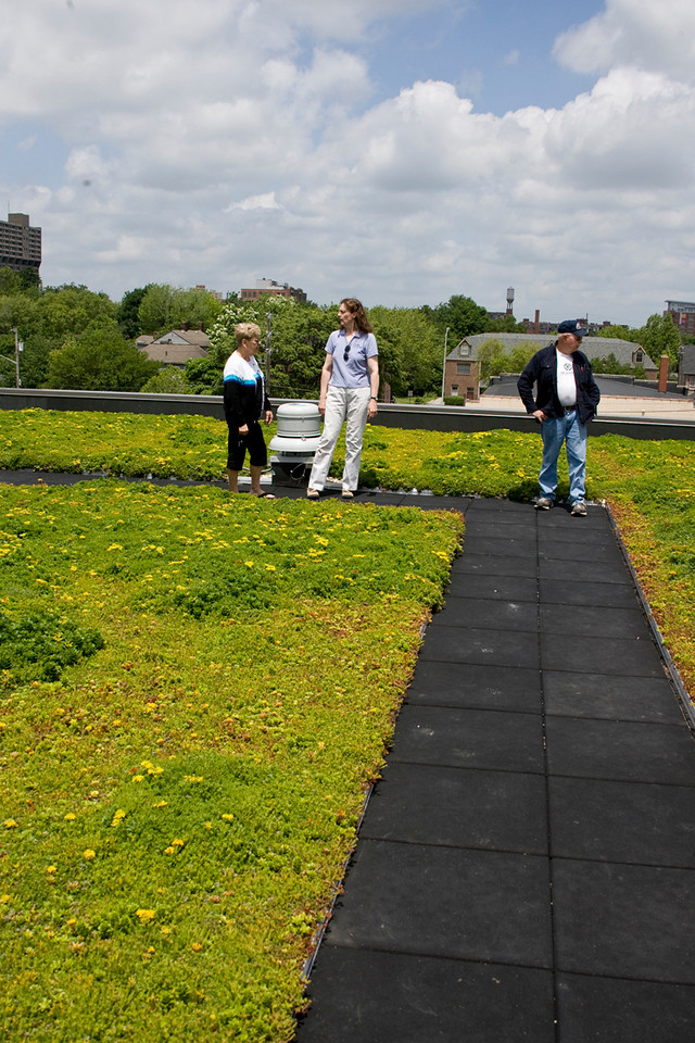 Besty Smith of the Nature Conservancy provided our tour.  Here we are on the roof of the three story building.  Over ten varieties of sedum are on the roof.  The only non-native plants on the property are some of the sedum here as Indiana only has a few native sedums.