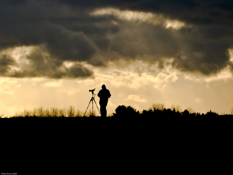 Evening Shift<br /> Birder waiting for the birds to arrive to roost on the Marshes. The temperature was cold and the clouds threatening.