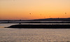 27 April 2011. Dusk at the Oysterbeds. Copyright Peter Drury 2011