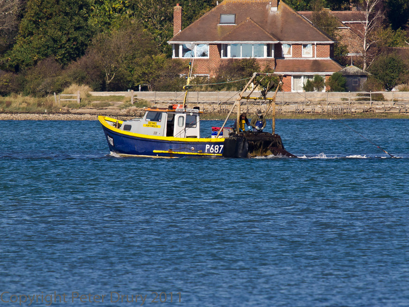 15 Oct 2011 Fishing in Langstone Harbour, close to the remains of the railway bridge.