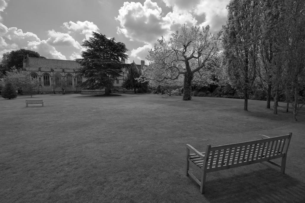 Garden in a college in Oxford