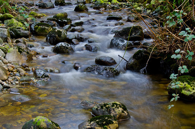 I love the way the water wraps around the rocks in a creek.  Very calming and peaceful.