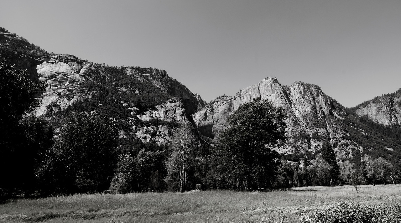 Yosemite Meadow B&W