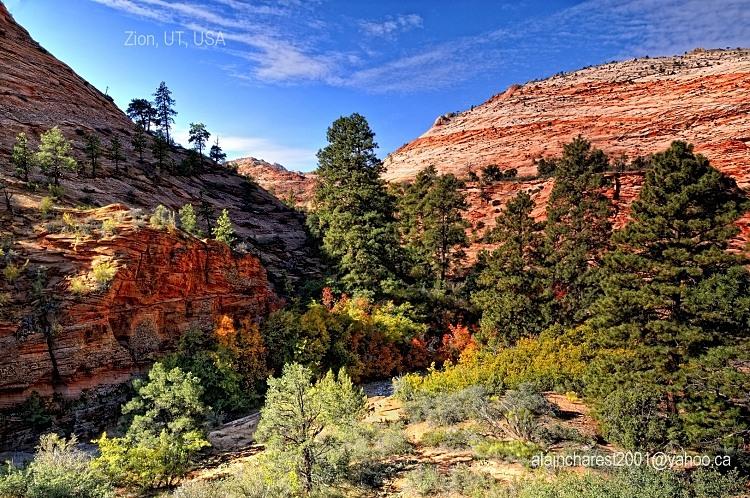 Zion landscape