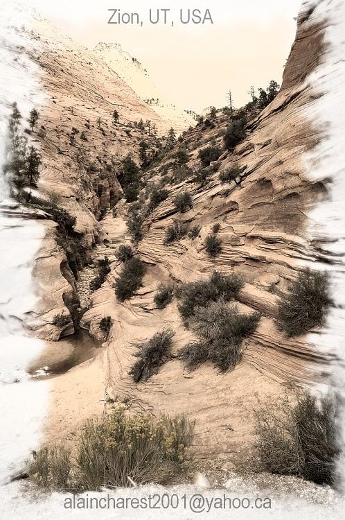 Zion Strata Canyon