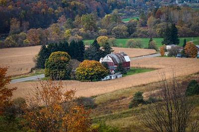 Upstate NY Oct 2008