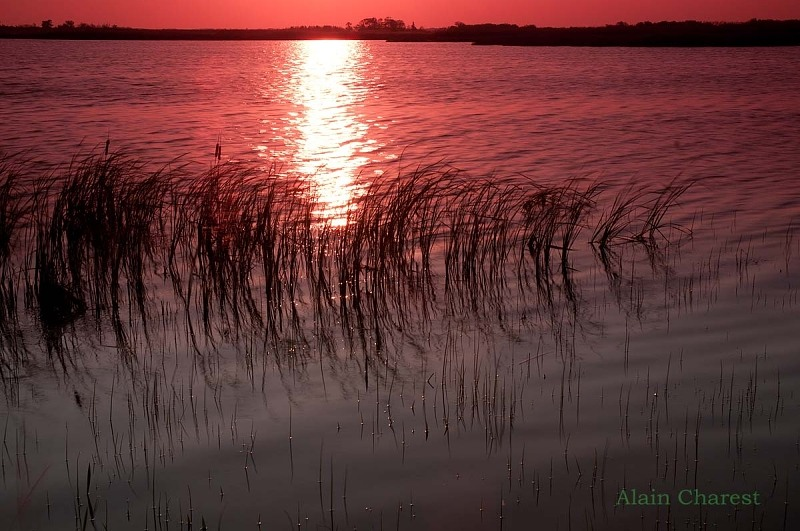 Sunset on the marsh