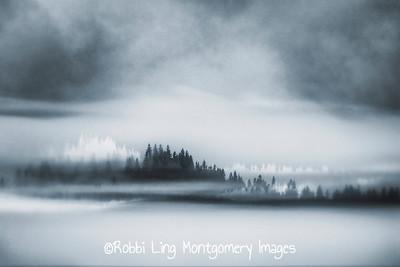 Haunting Fog
