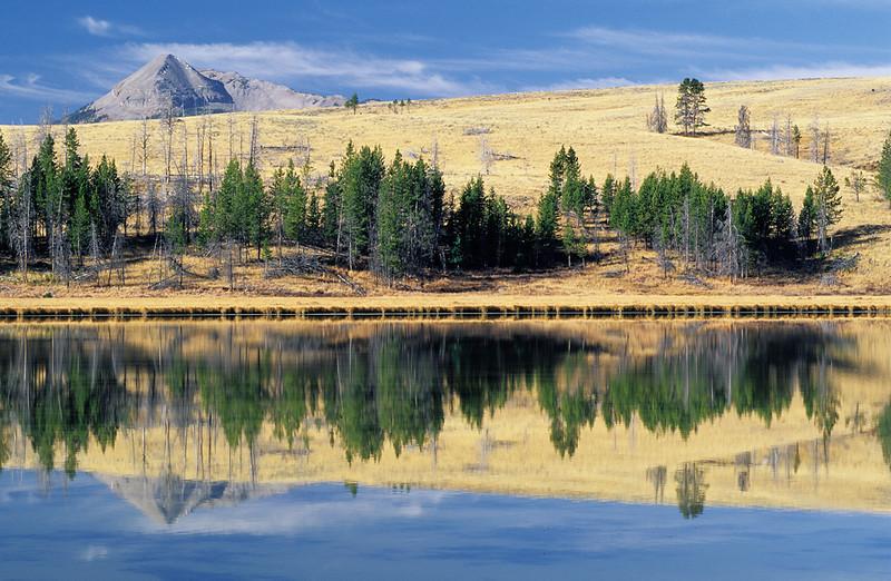 Swan Lake Sans Swans