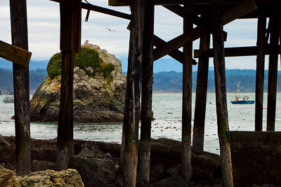 "Under the Trinidad Bay dock, Trinidad, California December, 2010  This photo is available in a large variety of sizes and mounting options. Check available options by clicking on the ""Buy"" button upper right."