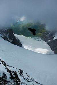 100611 Swiss Alps_MG_5471