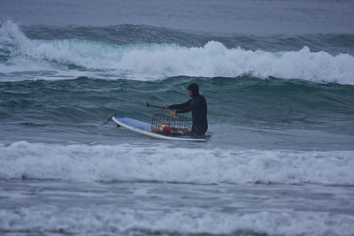 A paddle board surfer collects his crab pot.