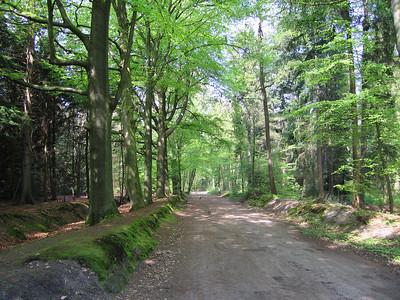 Heiligenbergerbeek wandeling