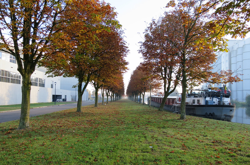 In 5 uur wandelen om het eiland Helmond