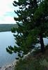 neder lake3
